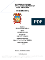 CONSOLIDACION. CHEPEANALI.docx