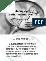 Biotecnologia No Melhoramento Animal
