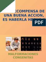 alteracionescromosomicasestructurales-110211205942-phpapp02