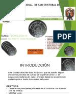 PROCESO DE CURTIEMBRE EN LA PLANTA PILOTO DE LA UNIVERSIDAD NACIONAL SAN CRISTOBAL DE HUAMANGA-AYACUCHO-PERU