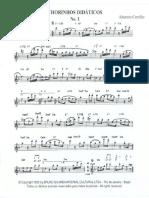 Altamiro_Carrilho_-_Chorinhos_Didaticos_para_Flauta.pdf