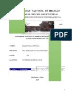 DIAGRAMA DE GANTT - COOPERATIVA SAN JACINTO - UNT
