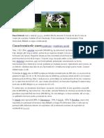 rase vaci