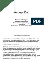 PERCEPCIÒN