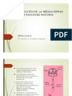 7 Organizacion de La Medula Espinal Para Las Funciones Motoras (1)