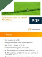 Presentacion-RLI.pdf