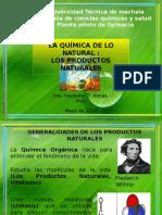 Quimica de Productos Naturales Introduccion