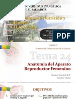 Tema 24 - Anatomia Reproductor Femenino - Nutricion 2015.pdf