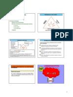 Aula 3 e 4 Rigo.pdf