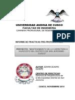 Informe - Practicas PreProfesionales - Edwin Q Q