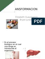 Factores Que Modifican La Biotransformación Del Fármaco [Autoguardado]
