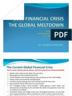 2008 Presentation Financial Crisis Global Melt Down17112009SDN