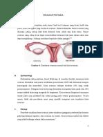 Kista-ovarium