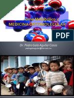 Sindromemetabolicoymedicinaortomolecular 150414092258 Conversion Gate01