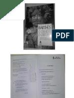 Barthes óbvio e obtuso