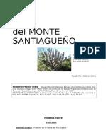 Copia de Ecos Del Monte Santiagueño-26 de Octubre - Copia