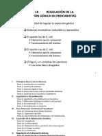Tema 18 Regulación de La Expresión Génica en Procariotas(4)