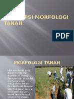 DESKRIPSI MORFOLOGI TANAH
