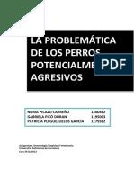 Problem de Los PPP