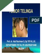 Sss155 Slide Tumor Telinga3