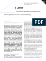 Expression and Maintenance of Mitochondrial DNA
