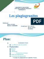les Plagiogranites