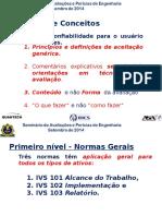 IVS apresentacao Ibape Foz 2014