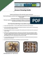 Mushroom Grow Guide 2015