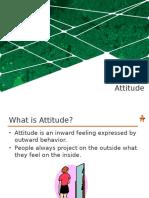 BPG 1 Attitude