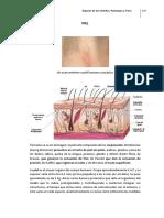 15- Órganos de Los Sentidos. Patologías y Tratam.mod