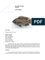 M. Sultonun Arifin Monograf Ikan Mujair