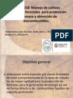 Bioenergía_Dr. Juan Bustamante y Dra. Stela Da Silva