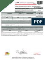 Imprimir Guia PDF