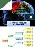 56042003-anatomi-sistem-saraf.ppt