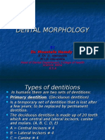 Dental Morphology 1