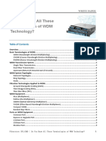 Do You Know All These Terminologies of WDM Technology