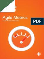 Whitepaper Agile Metrics