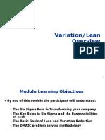 02 Variation_Lean Overview CJ