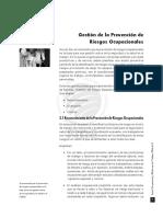 SALUD OCUP.TRABAJO V. Capitulo 2. Gestión de la Prevención de Riesgos Ocupacionales.desbloqueado.pdf