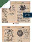 100 Plantas Que Se Comen 3