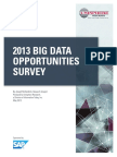 2013 Big Data Opportunities Survey