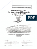 pheasantplan10