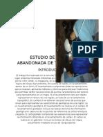 ESTUDIO-DE-LA-MINA-TAMBOMACHAY (1).docx