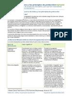 A12 Principios de Protección Impresos