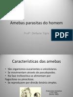 1 - Amebas Parasitas Do Homem