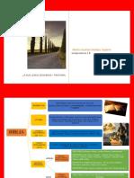 Pastoral Organizador Gráfico.pdf