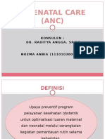 DT-ANC NUZMA FIX.pptx