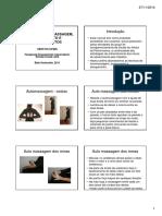 Manual de Automassagem, Aquecimento e Alongamentos Ronise Lima 2011 [Modo de Compatibilidade]