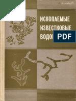 Чувашов Б. И.  Ископаемые Известковые Водоросли