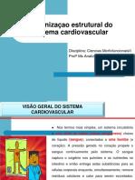 Aula 02 Organizaçao Estrutural Cardiaca